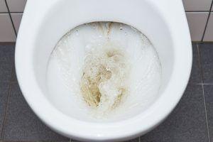 Toilet met regenwater spoelen